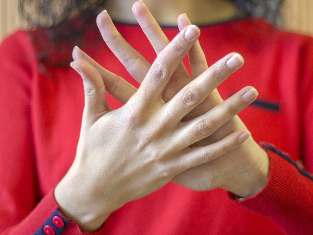master lengua de signos